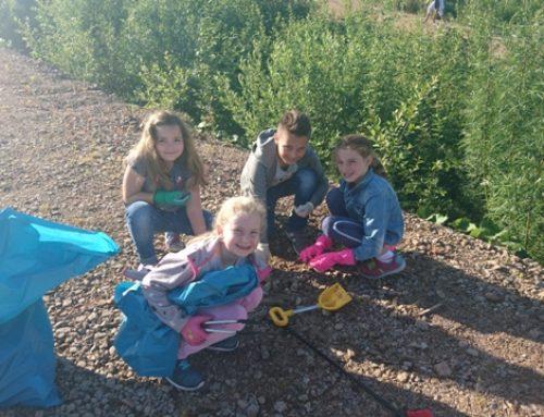 Hörnlebergschule trägt zum Klimaschutz bei